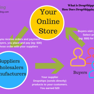 what-is-dropshipping-bizpudding